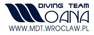 logo_mdt(1)